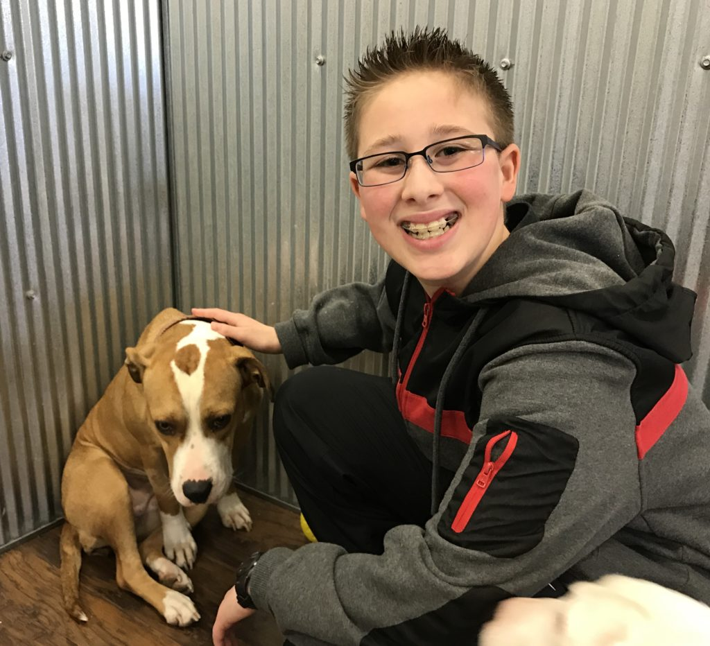 mitzvah project Earlier this year, 14-year-old jacqueline rubin completed one of the most fundamental rituals of the jewish faith, her bat mitzvah a lifelong animal lover, jacqueline chose to focus her.